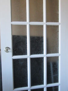 door with privacy tempered glass