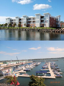 Water Front Condo All Inclusive Short Term &/or for winter