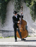 Looking for a Double-bass or Cello Player!