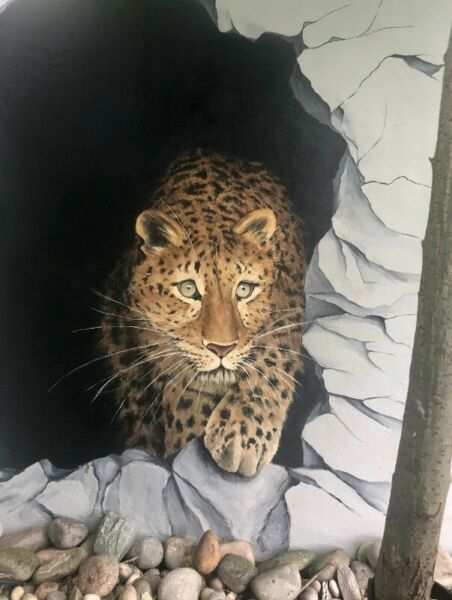 Mural Artist Dublin - Hand-painted murals - Bring your walls to life!