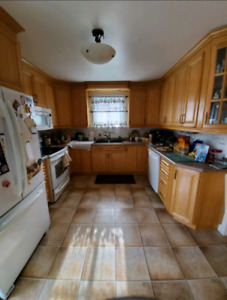 1 bedroom available for female student in quiet house