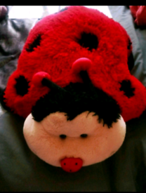 Ladybird pillow pet