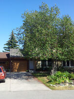 Available Feb 1 - Three bedroom home in Canyon Meadows SW
