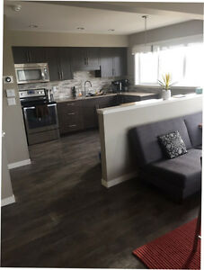 Modern 3 Bedroom Condo Home For Sublet