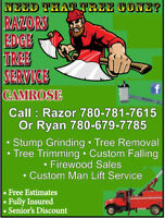 Tree Removal and tree trimming