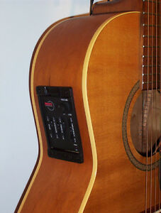 Norman B20 folk with electronics plus case and or extras