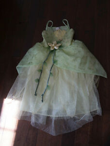 Princess Tiana Costume from Disney JUST REDUCED COST $120