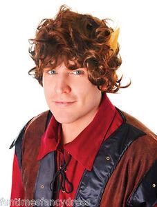 Hobbit Frodo Bilbo Baggins Peregrin Took Wig & Ears Fancy Dress Lotr Book Week