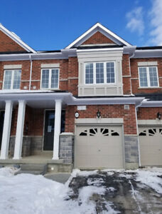 Brand new townhouse 2100sf stoney creek mnt