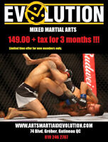 Mixed Martial Arts - special offer!