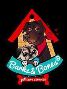 Barks & Bones Pet care services, Dog walking Guelph