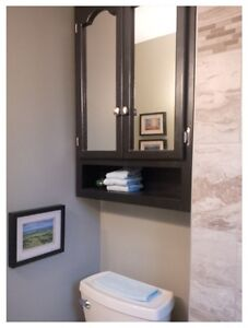 Ideal for Retired Couple or Individual - Available February 1st, London Ontario image 8