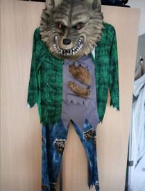 Warewolf fancy dress