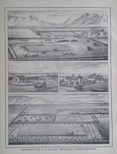 Orig 1885 V.W. Cline Property 480 Acres Print Bozeman Mt Montana Territory