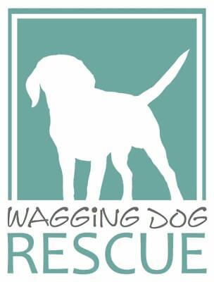 Wagging Dog Rescue