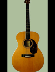 Looking for an acoustic guitar