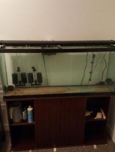 55 Gallon Aquarium + heater + filters + stand