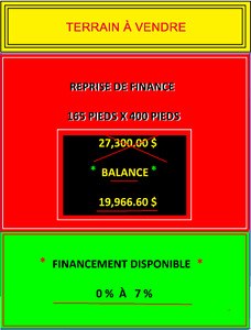 Reprise de Finance 165 x 400 Terrain