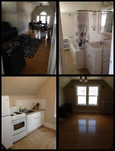 Newly Renovated 1 BD Apartment For Rent