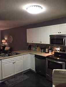 Recently updated one bedroom condo for sale Edmonton Edmonton Area image 1