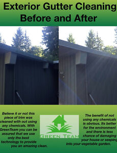 Gutter Scrubbing And Yard Clean Up! Cleaning W/O Chemicals North Shore Greater Vancouver Area image 5