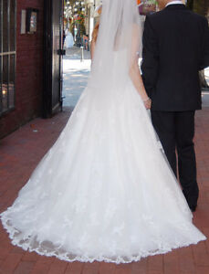 Gorgeous Wedding Dress and Veil for a Great Price!