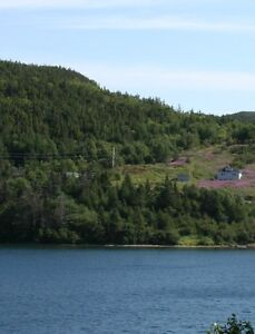 Lot for sale in St. Jones Within Trinity Bay St. John's Newfoundland image 4