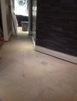 """HIGHLY SKILLED FLOOR REMOVAL EXPERTS! """"DYNASTY DEMO""""  2894564083"""