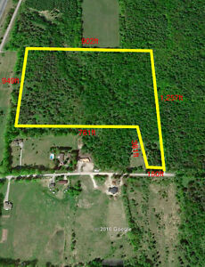 Awesome 19.66 acre building lot.