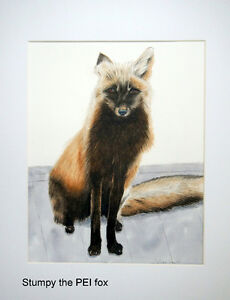 Fox watecolour painting