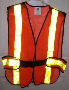 Safety Helmet MSA Super V and PIO Safety Vest and Glasses Set London Ontario image 2