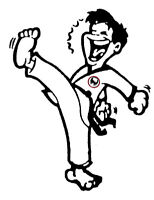 Kids Karate Lessons! (Parents can train too!)