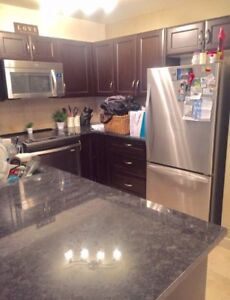 One bedroom condo available for rent Dec 1 in saddletowne NE
