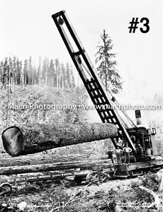 Sawmill logging and lumber photos Strathcona County Edmonton Area image 4