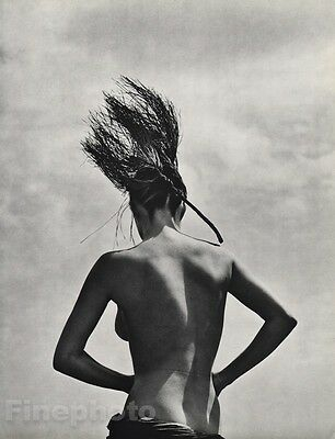 1984 Surreal 16x20 FEMALE NUDE Consuelo Fashion Model Photo Gravure ~ HERB RITTS