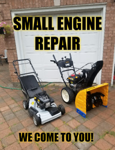 Lawn Mower Repairs • HOME VISITS • Lawnmower mover
