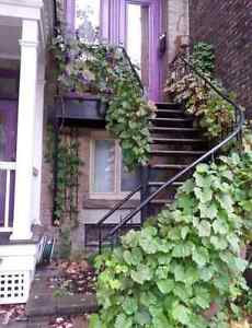 Beautiful Vine-covered 5 1/2 in the heart of Plateau