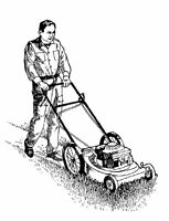 Residential Lawncare Maintenance {Weed Treatment Special!!}