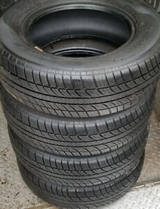 195 70 14 - EVERGREEN EH22 - ALL SEASON TIRES - SET OF 4