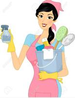 Service entretien ménager Josée et fille