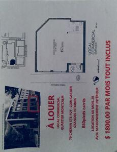 Quartier Montcalm - location au mois