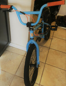 My son is giving away his BMX
