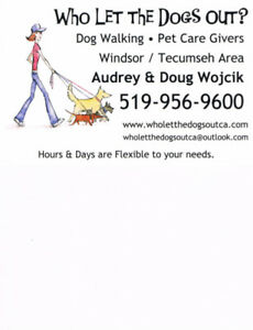 Who Let the Dogs Out?  Dog walkers, Care givers, Boarding & More