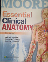 Essential Clinical Anatomy Textbook in Excellent Condition