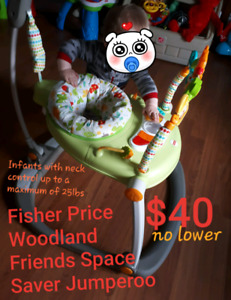 Fisher Price Woodland Friends Space Saver Jumperoo - $40.00 FIRM