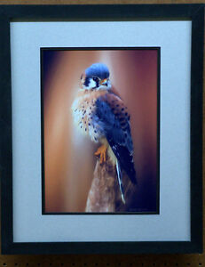 professionally framed and matted pictures  SALE Sarnia Sarnia Area image 9