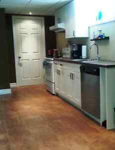 Extra Large 1 BR Basement Apt. Lawrence and Brimley - Sept 1