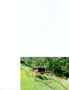 Fancy Horse Show Buggy