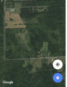 29.5 acres wooded lot