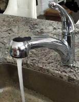 Kitchen Faucet in Chrome